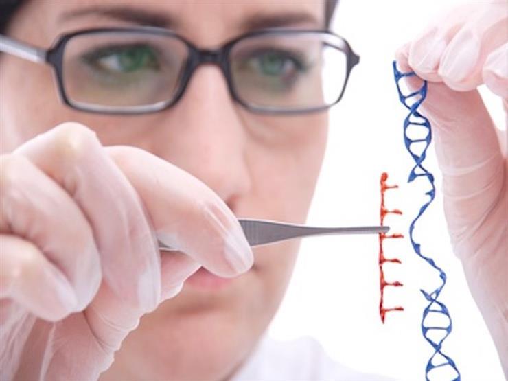 وداعًا للأمراض الوراثية.. فريق صيني ينجح في تعديل جينات الأجنة