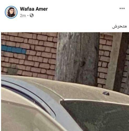 وفاء عامر عبر فيس بوك