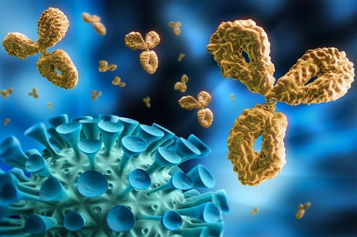إلى متى تستمر مناعة لقاحات كورونا؟.. خبراء يكشفون المدة المتوقعة