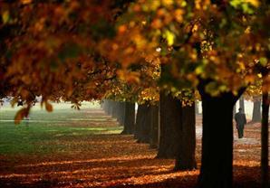 بالصور: أجمل أماكن العالم فى فصل الخريف