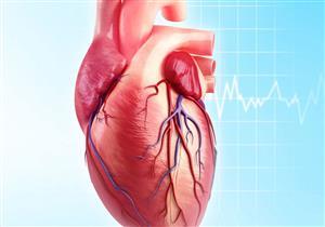 دراسة: فيروس كورونا قد يؤدي إلى قطع ألياف القلب إلى أجزاء صغيرة دقيقة الحجم