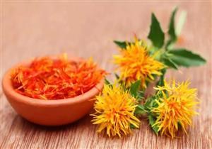 منها خفض الكوليسترول.. 5 فوائد صحية لبذور العُصفر
