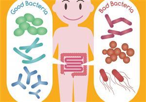 أبرزها الزبادي.. 6 أطعمة تحافظ على توازن الميكروبيوم في الأمعاء