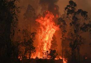 دراسة: دخان الحرائق يسبب مشكلات جلدية خطيرة