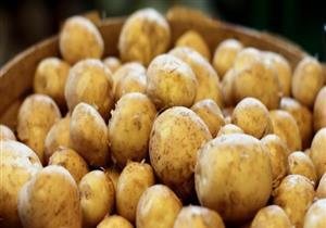 البطاطس.. فوائد متعددة تعود على صحتك عند طهيها بهذه الطريقة