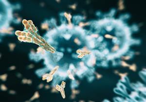 فيروس كورونا.. إلى متى تستمر فعالية الأجسام المضادة بعد التعافي؟
