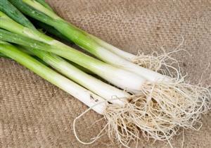 7 فوائد لتناول البصل الأخضر على الإفطار في رمضان