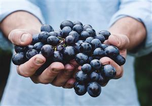 العنب للإمساك.. هل يغني عن تناول الملينات؟