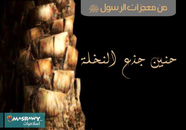 حنين الجذع ومنبر النبي