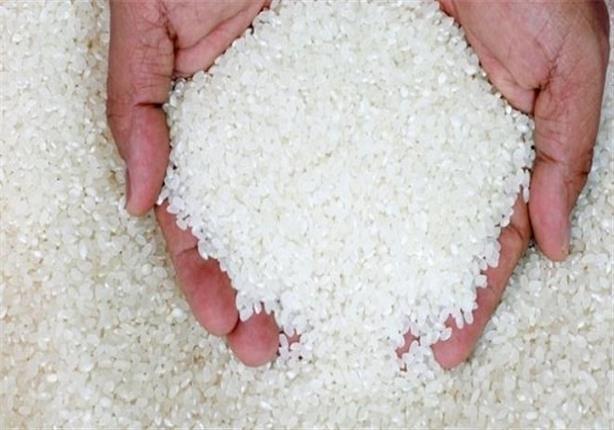 أسعار الأرز تتراجع بقيمة 1000 جنيه في الطن بسبب موسم الحصاد