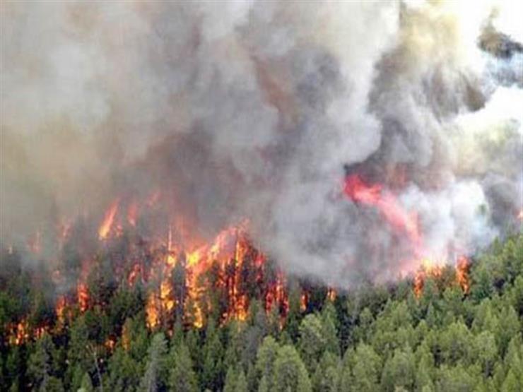 البرازيل تسحب فرق الطوارئ التي نشرتها لإخماد حرائق الغابات