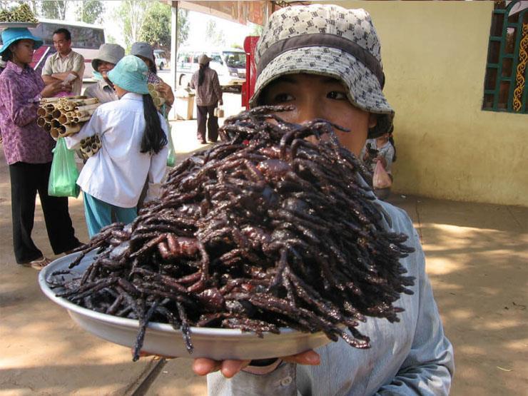 بالصور أغرب 10 أكلات في العالم منهم مصرية مصراوى