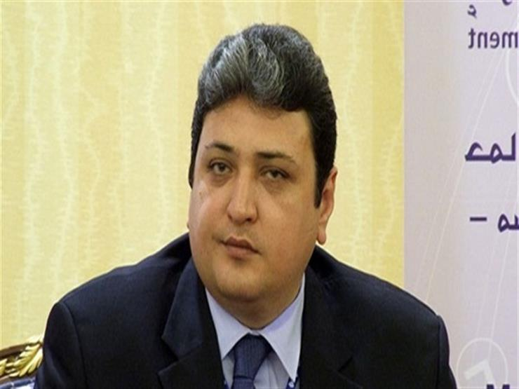 رئيس المنظمة العربية لحقوق الإنسان: نهدف للنهوض بمنظومة التش   مصراوى