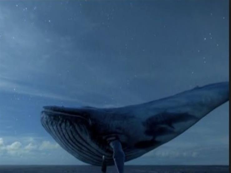 """ما هي لعبة """"الحوت الأزرق"""" التي قتلت """"عم محمد""""؟"""