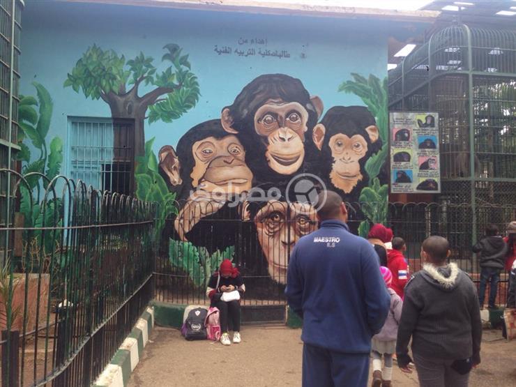 بالألوان.. مشروع تخرّج يُزين حديقة الحيوان بـ7 جداريات عن الأمومة