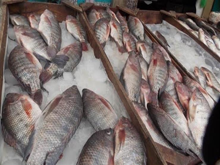 تراجع البلطي.. أسعار الأسماك في سوق العبور اليوم الخميس