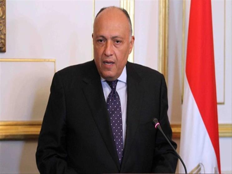 وزير الخارجية: رغبة مصرية- سودانية مشتركة لتكثيف التعاون والتنسيق - فيديو