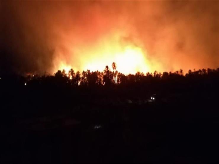 """بالأسماء.. ارتفاع مصابي حريق """"الراشدة"""" لـ32 بينهم مدير الحماية المدنية"""