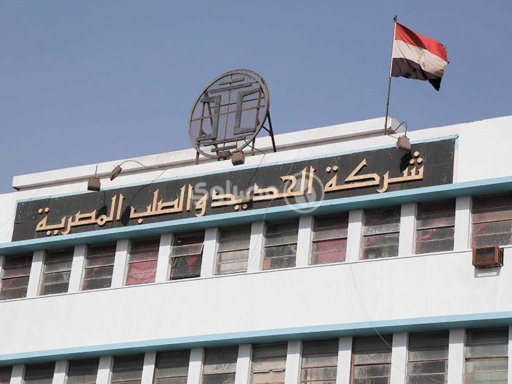 """بعد تصفية """"الحديد والصلب"""".. كيف سيتأثر سوق الحديد في مصر؟"""