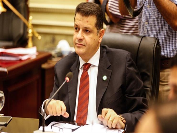 حقوق الإنسان بالبرلمان تثمن موقف الاتحاد الأوروبي تجاه سد النهضة وحقوق الإنسان بمصر