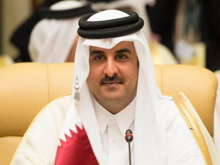 أمير قطر يستقبل سامح شكري حاملًا رسالة من الرئيس السيسي