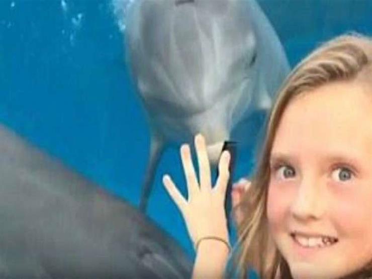بالفيديو- طفلة تجذب دلافين بطريقة تعلمتها من الإنترنت