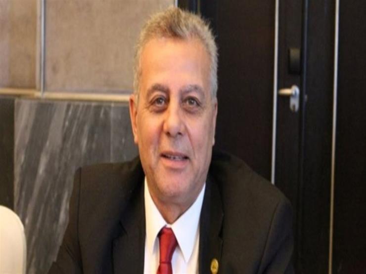 """وكيل """"دفاع البرلمان"""": على المجتمع الدولي احترام العملية السياسية في مصر"""