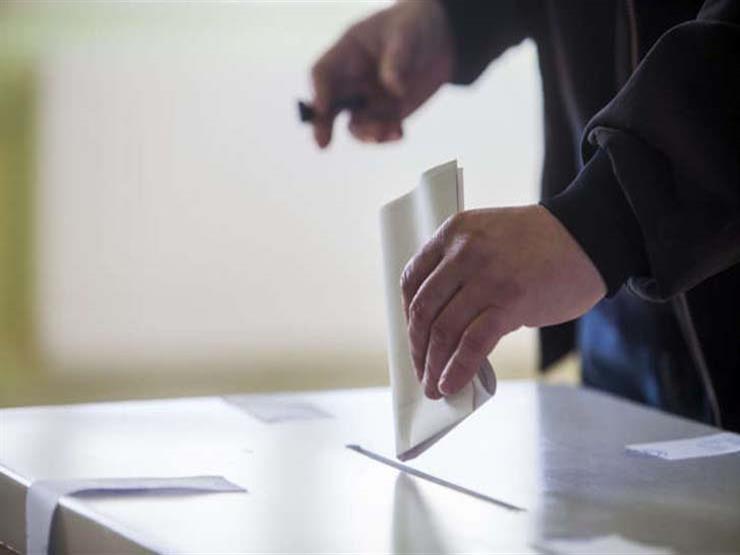 المصريون في جنوب أفريقيا يواصلون التصويت في آخر أيام الانتخابات