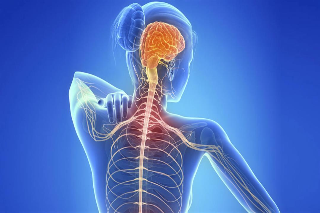 ماهي أول أعراض مرض التصلب اللويحي المتعدد إم إس طــب وحــيـاة
