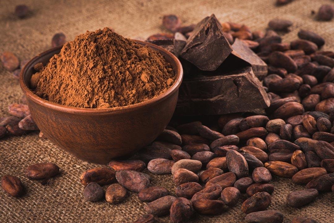 الكاكاو يقلل مخاطر الإصابة بالنوبات القلبية والخرف