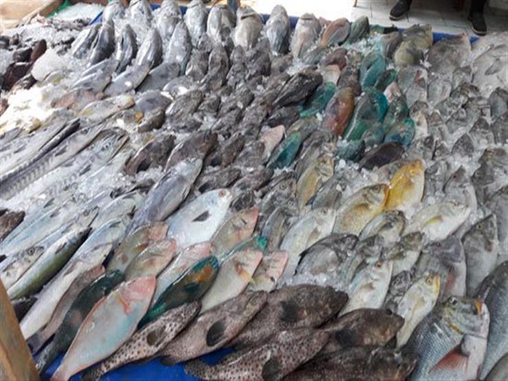 منها البيض والسمك.. 3 منتجات صينية هددت حياة المصريين