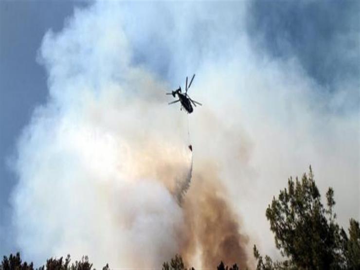 مؤسسات حقوقية فلسطينية تطالب الاحتلال بوقف رش مبيدات مسرطنة فوق غزة
