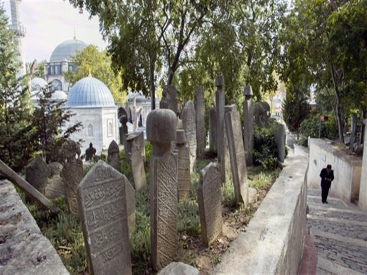 الإفتاء توضح حكم زراعة الأشجار داخل المقابر