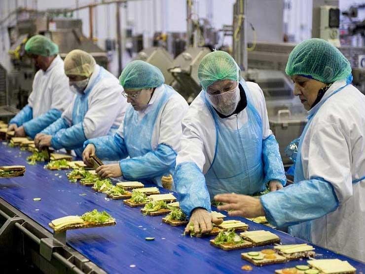 بمناسبة يوم العمل اللائق.. 71% من العاملين بأجر ملتحقون بوظائف دائمة