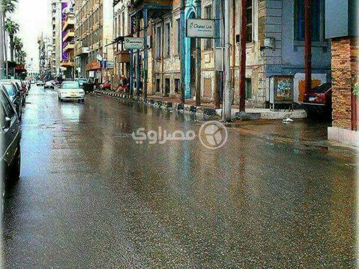 الصحة: الأمطار سبب رئيسي لانتشار الذباب مؤخرًا