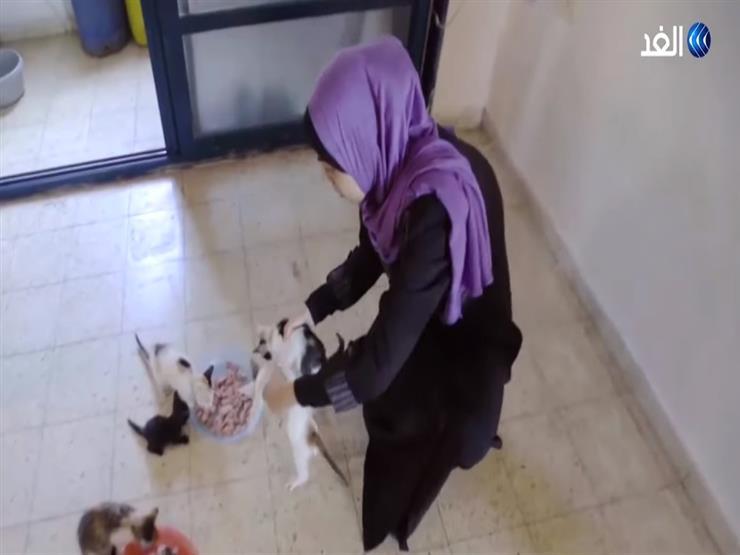بالفيديو... فلسطينية تؤوى قطط الشوارع لتغيير الثقافة المجتمعية