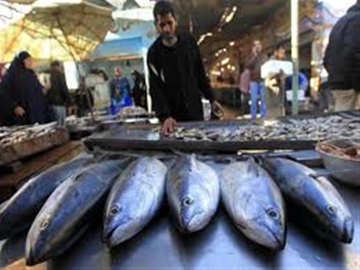 زيادة الكابوريا والجمبري.. أسعار الأسماك في سوق العبور خلال أسبوع