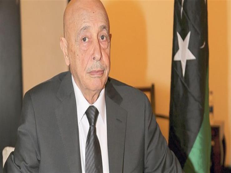 عقيلة صالح: ليبيا ستحتاج إلى دعم الجيش المصري في حربها ضد الإرهاب