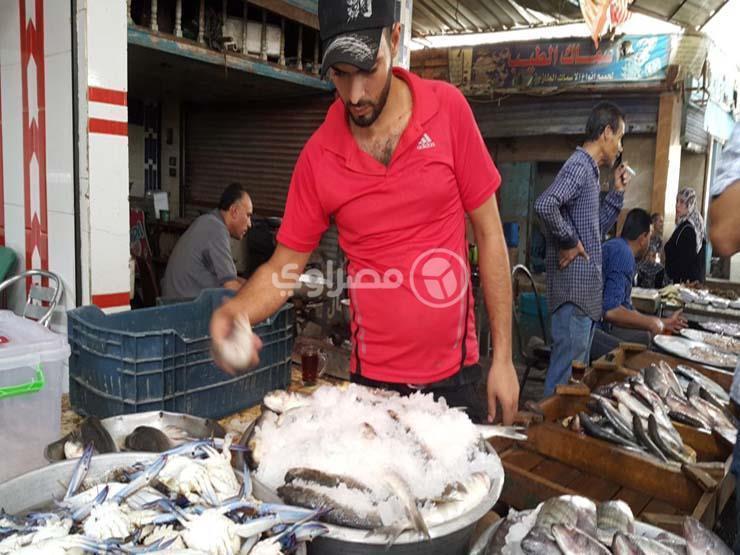 أسعار الأسماك والمأكولات البحرية في سوق العبور اليوم الثلاثاء