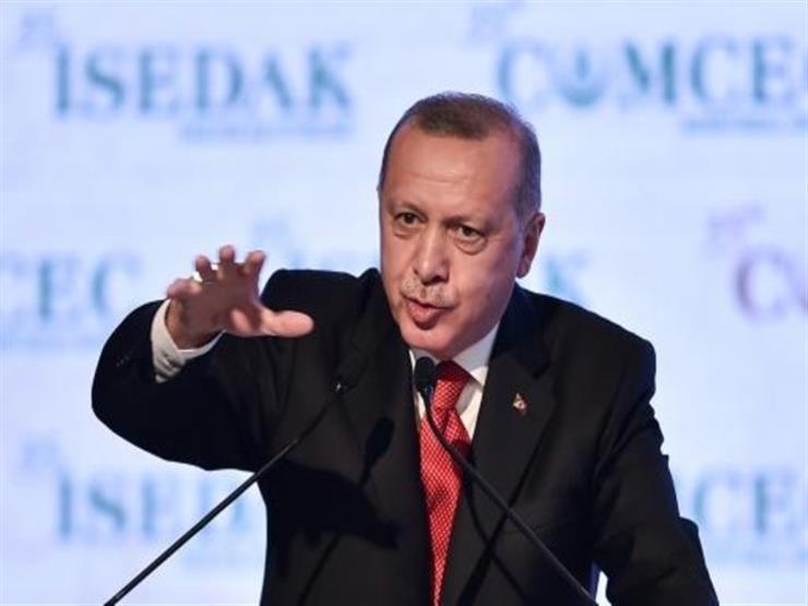 أردوغان: قمة رباعية مع روسيا وفرنسا وألمانيا بشأن سوريا في مارس