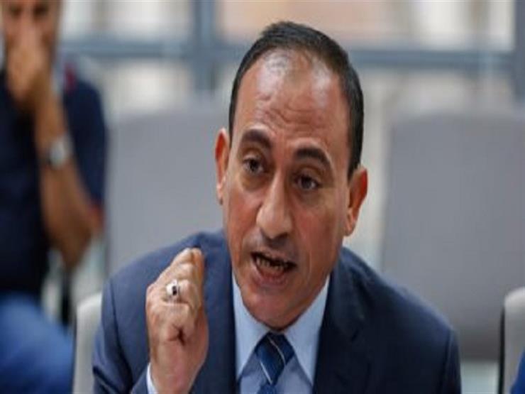 """وكيل """"نقل النواب"""": المصريون ألقوا بدعوات مقاطعة الانتخابات في سلة المهملات"""