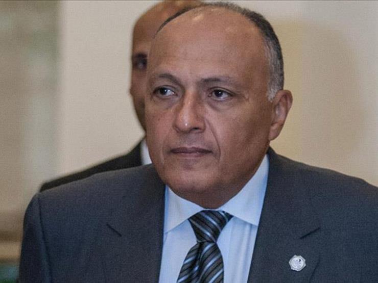 شكري: مصر تطالب مجلس الأمن بتبني مشروع قرار تونسي حول سد النهضة