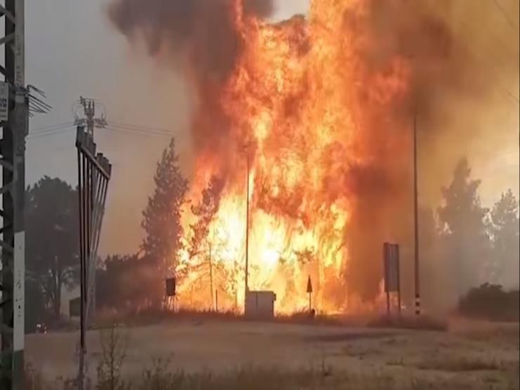 بالفيديو.. حرارة الجو تُشعل النيران في إسرائيل