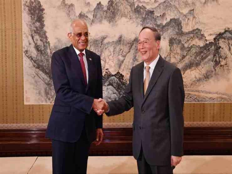 رئيس النواب يدعو الصين لتنسيق ثلاثي مع مصر في أفريقيا خلال رئاستها للاتحاد