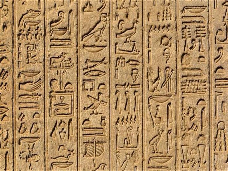 عميد كلية التربية بالسادات: تأخرنا كثيرًا في دراسة اللغة الهيروغليفية في المدارس