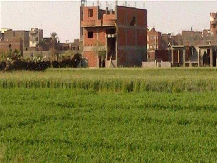 خاص.. ننشر صورة طلب تحويل الأراضي الزراعية بالقاهرة لمبانِ