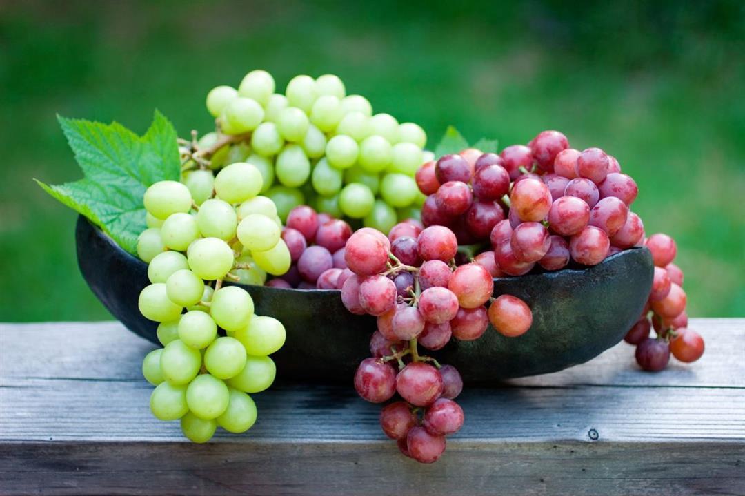 ما الفرق بين العنب الأحمر والعنب الأخضر؟