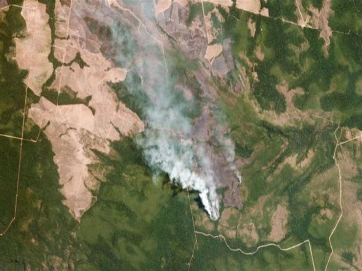 حرائق غابات الأمازون: ما الذي يمكن أن تتسبب فيه؟