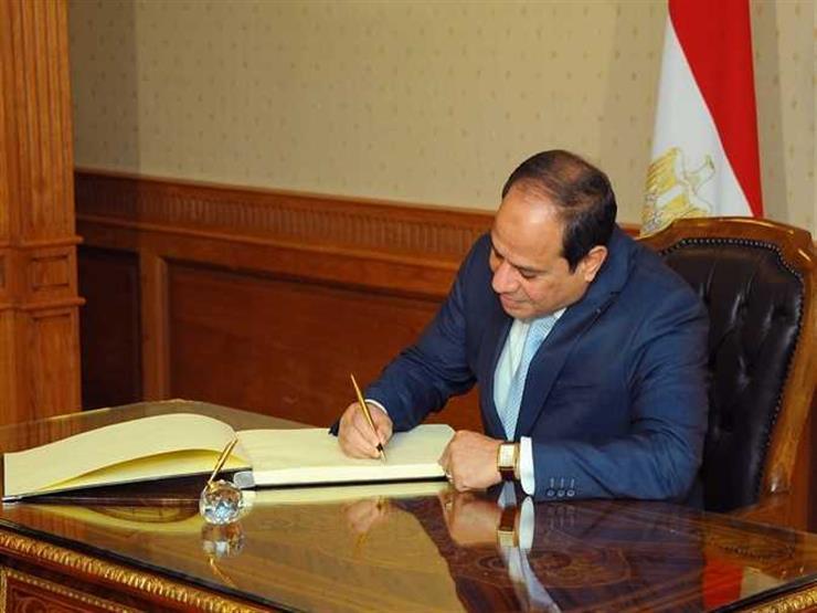 """السيسي يوافق على إضافة كلية """"التكنولوجيا الحيوية"""" لجامعة النيل"""