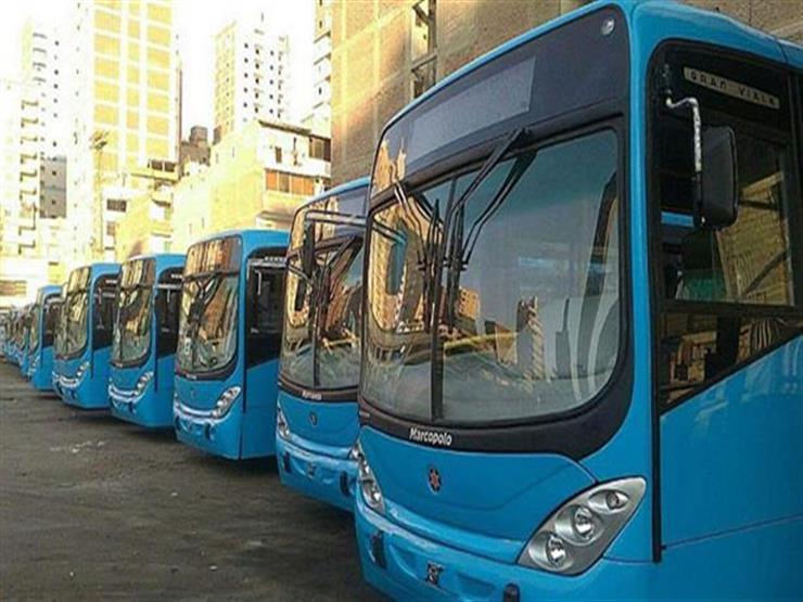 النقل العام: تنفيذ قرار إعفاء كبار السن من رسوم المواصلات بشرط وحيد- فيديو